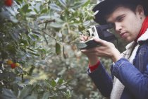 Man taking photo of berry bush with instant camera — Stock Photo