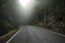 Italia, Toscana, Monte Amiata, forestal y carretera vacía en otoño - foto de stock
