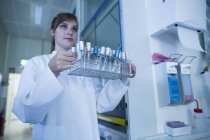 Young female natural scientist working at microbiology laboratory — Stock Photo