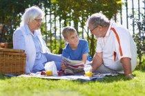 Grands-parents avec petit-fils ayant un pique-nique dans le parc — Photo de stock