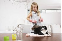 Mädchen zu Hause putzt Katze auf Esstisch — Stockfoto