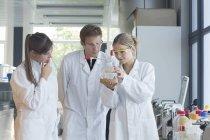 Trois chimistes travaillant dans un laboratoire chimique — Photo de stock