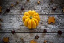 Yellow pumpkin with chestnuts and acorns on grey wood — Stock Photo
