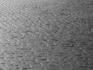 Канада, Британская Колумбия, острова Ванкувер, Лонг-Бич, структуры в песке во время отлива — стоковое фото