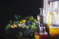 Sortimento de ervas medicinais e garrafas de óleo — Fotografia de Stock