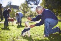 Portrait of senior man training puppy on grassy meadow — Stock Photo