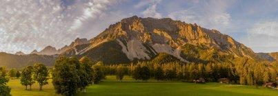 Österreich, Steiermark, Tal der Ramsau, Ahornbäume auf Feld und Berge — Stockfoto