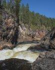 Финляндия, Окланд, Кууфо, национальный парк Оуланка, пороги Киутакоенгаес — стоковое фото