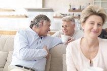Drei alte Freunde treffen zu Hause — Stockfoto