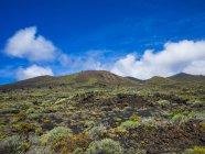 Spain, Canary Islands, La Palma, Faro de Fuencaliente, Volcanic landscape and vegetation fields — Stock Photo