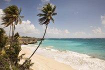 Vista dell'albero di palme e della spiaggia sabbiosa sopra il puntello contro acqua — Foto stock
