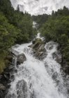Австрия, Тироль, Каунерталь, горный ручей Вурмтальбах и деревья на берегу — стоковое фото