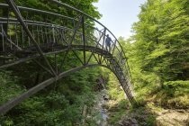 Austria, Lower Austria, Mostviertel, Eisenwurzen, Ybbsitz, hiker walking on steel bridge — Stock Photo
