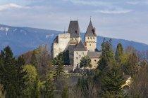 Австрия, Lower Austria, Buckfeld, Wartenstein, вид дома на холме в дневное время — стоковое фото