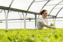 Молодая женщина-садовница работает в питомнике — стоковое фото