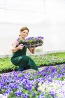 Woman in nursery holding tray with flowers — Stock Photo