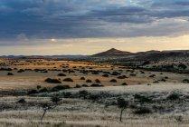 Coucher de soleil sur paysage pendant la journée, Damaraland, Namibie, Afrique — Photo de stock
