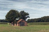 Ferme-du-Nord-Westphalie, en Allemagne, dans le Münsterland occidental — Photo de stock