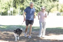Couple sénior jogging avec chien — Photo de stock