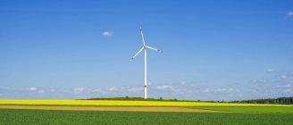 Turbina eólica de Alemania, Tomerdingen, en campo de violación floración amarilla - foto de stock