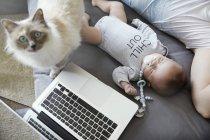 Joven padre y bebé durmiendo en el sofá con gato y portátil - foto de stock