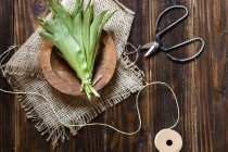 Wild garlic leaves tied with twine on plate on dark wood — Stock Photo