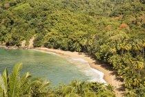 Caraïbes, Trinidad et Tobago, Tobago, plage baie de l'anglais pendant la journée — Photo de stock