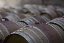 Barris de vinho na adega, de perto — Fotografia de Stock
