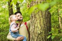 Ragazza con il padre nella foresta esaminando il tronco d'albero — Foto stock