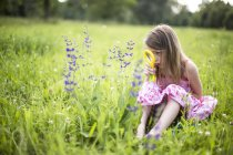Little girl sitting on meadow watching flowers with magnifying glass — Stock Photo