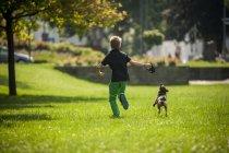 Vista traseira do menino correndo no gramado verde com o seu cão — Fotografia de Stock