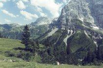 Austria, Tirol, Cordillera de Karwendel, región de Ahornboden durante el día - foto de stock