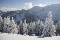 Германия, Бавария, Sudelfeld, горы зимой в дневное время — стоковое фото
