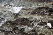 Oceano de Croácia, mar Mediterrâneo, superfície de água — Fotografia de Stock