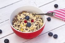 Bowl of muesli with fresh blueberries on white wooden table — Stock Photo