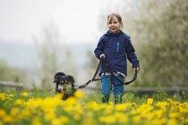 Портрет девушки, гуляющей с собакой на лугу — стоковое фото
