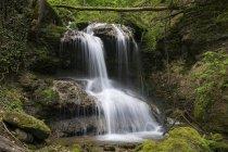 Германия, Баден Вюртемберг, Мюльбах, Водопад в дневное время — стоковое фото