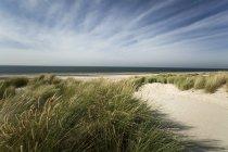 Голландія, Westenschouwen, узбережжі Північного моря денний час — стокове фото