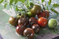 Frisch gepflückt sardische Tomaten mit Blättern auf Grünholz — Stockfoto