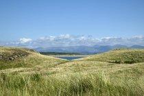 Великобританія, Уельс, Ynys Llanddwyn, піщані дюни на узбережжі — стокове фото