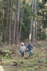 Frère et soeur marchant dans les bois se tenant la main — Photo de stock