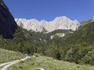 Áustria, Caríntia, Alpes Cárnicos, Caminhante que caminha em Biegengebirge — Fotografia de Stock