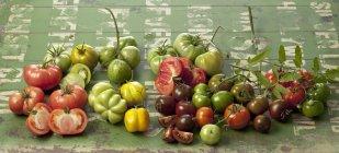 Varieties of fresh tomatoes on green wood — Stock Photo