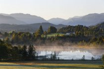 Germania, Baviera, Upper Bavaria, Pfaffenwinkel, Wildsteig, riflesso nel lago schwaigsee all'alba — Foto stock