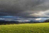 Royaume-Uni, Écosse, vue du Parc National de Cairngorms — Photo de stock