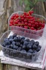 Red currants and blueberries in plastic boxes — Stock Photo