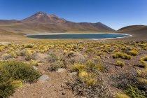 América do Sul, Chile, deserto do Atacama, Laguna Miniques, no fundo dos Andes — Fotografia de Stock