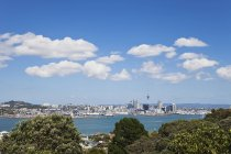 New Zealand, Sky tower at Auckland and skyline — Stock Photo