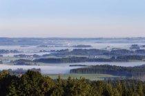 Germania, Baviera, Upper Bavaria, Pfaffenwinkel, Wildsteig Rentschen nella nebbia — Foto stock