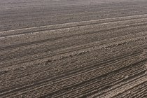 View of ploughed soil  during daytime — Stock Photo